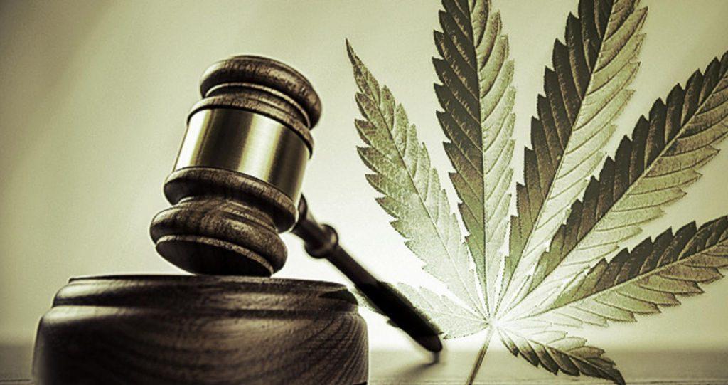 Cannabis terapeutica Farmacia Mamone Torino